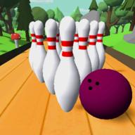 保龄球游戏 0.52 安卓版