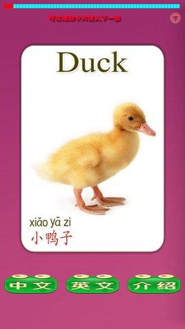 儿童教育之识动物app