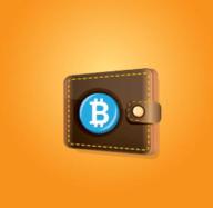比特币钱包官方手机版 1.0.1 安卓版