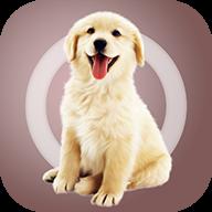 人狗交流器app官方版 1.2.0