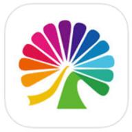 大麦网app手机版 8.1.6
