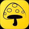 蘑菇丁app苹果版 3.4.1