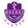 河北乡医一体化管理 1.1.1