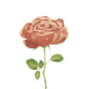 花瓣告诉我官方版2021app v4.5.6