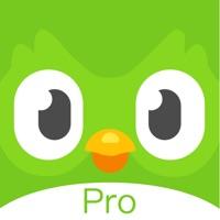 多邻国app学英语 5.21.0 官方