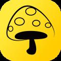 蘑菇丁app官方蘋果版iOS 3.4.0