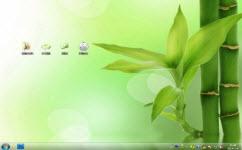 清新绿竹电脑主题 win7版 1.0