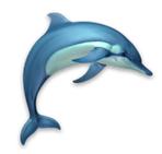 Dolphins mac版