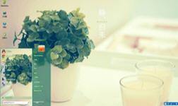 绿植盆栽win7主题 1.0