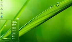 绿叶露珠护眼xp主题桌面 1.0