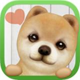 掌上狗狗 3.7.1 安卓正式版
