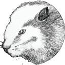 DBeaver 6.0.5 Mac版
