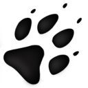 ico图标提取器AIok gook 1.0 绿色免费版