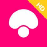 蘑菇街 3.2.2 iPad版