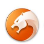 金山猎豹浏览器极速版