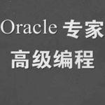 Oracle专家高级编程 中文完整版 1.0