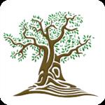 树知道app 1.5 安卓版