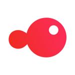 锦鲤团app