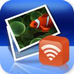 wirelessmon下载 5.1.0 中文破解版