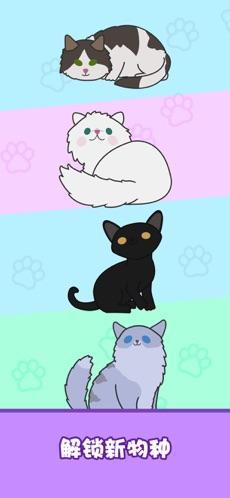 心动契约猫咪进化论手机版