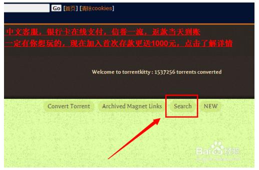 TorrentKitty中文网客户端下载 官方最新版 1.0