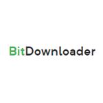 BitDownloader 1.0 官方版