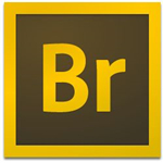 Adobe Bridge CC2020下载