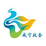 咸宁政务 3.8.0 安卓手机版