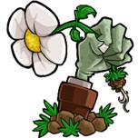 植物大战僵尸花园战争下载 最新手机版 1.0