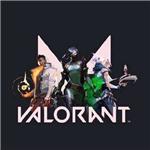 VALORANT中文补丁下载 1.0 免费版