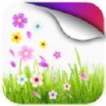 樱花动态壁纸高清版下载 1.1 手机版