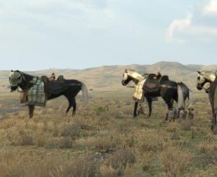 骑马与砍杀2巨型战马MOD 绿化版 1.0