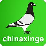 中国信鸽信息网下载手机版 20201018 安卓版
